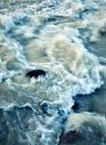 Άγριος ποταμός ορμητικά σημείων ποταμού που πρήζεται από τη βροχή Στοκ φωτογραφία με δικαίωμα ελεύθερης χρήσης