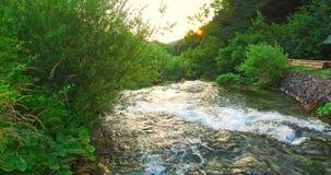 Άγριος ποταμός - πράσινο τοπίο φιλμ μικρού μήκους