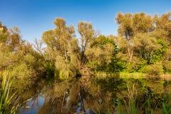 Άγριος ποταμός Στοκ Εικόνα
