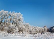 άγριος χειμώνας τοπίου στοκ εικόνα με δικαίωμα ελεύθερης χρήσης