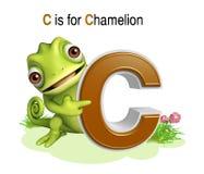 Άγριο ζώο Chamelion με το alphabate Στοκ εικόνες με δικαίωμα ελεύθερης χρήσης