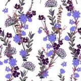 Άγριο λιβαδιών λουλουδιών άνευ ραφής χτύπημα αέρα σχεδίων ζωηρόχρωμο floral, απεικόνιση αποθεμάτων