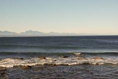 Άγριο νοτιοαφρικανικό σύνολο γραμμών ακτών των άγριων λουλουδιών Στοκ Φωτογραφία
