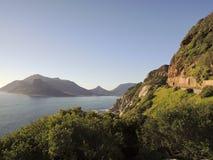 Άγριο νοτιοαφρικανικό σύνολο γραμμών ακτών των άγριων λουλουδιών Στοκ Εικόνες