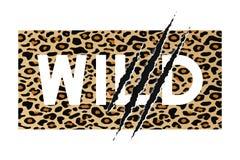 Άγριο σύνθημα στο υπόβαθρο δερμάτων λεοπαρδάλεων με τη γρατσουνιά νυχιών Σχέδιο μπλουζών, γραφική παράσταση τυπογραφίας για το πο απεικόνιση αποθεμάτων
