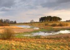 Άγριο τοπίο άνοιξη Στοκ εικόνα με δικαίωμα ελεύθερης χρήσης