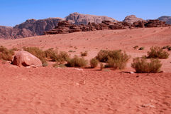 Άγριο τοπίο του ρουμιού Ιορδανία Wadi Στοκ Εικόνα