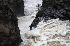 άγριο ύδωρ πτώσης Στοκ εικόνα με δικαίωμα ελεύθερης χρήσης