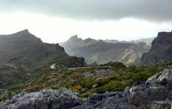 Άγριο Tenerife Στοκ Εικόνες