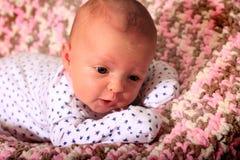 άγρυπνος νεογέννητος Στοκ Εικόνες