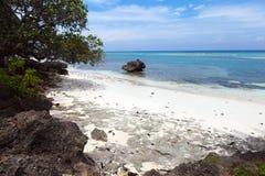 Άθικτη τροπική παραλία, τυρκουάζ άποψη της θάλασσας με το tropica Στοκ Φωτογραφία
