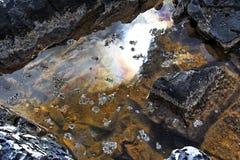 άλας λιμνών άλμης Στοκ εικόνα με δικαίωμα ελεύθερης χρήσης