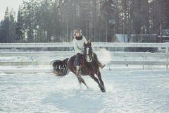Άλμα γύρου αλόγων χειμερινού άλματος Στοκ Φωτογραφία