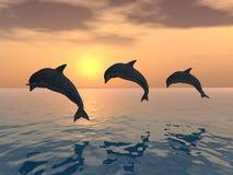 άλμα δελφινιών διανυσματική απεικόνιση