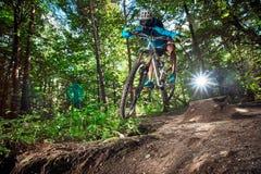 Άλμα και μύγα σε ένα ποδήλατο βουνών στο δάσος Στοκ Εικόνες
