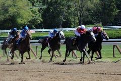 Άλογα αγώνων και jockeys στη διαδρομή στοκ φωτογραφίες
