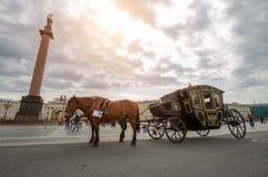 Άλογα με μια μεταφορά στο τετράγωνο παλατιών πετώντας εστιατόριο Ρωσία Άγιος Paul Peter Πετρούπολη φρουρίων Ολλανδού 17 Αυγούστου Στοκ Εικόνες
