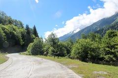 Άλογα σε έναν δρόμο βουνών των βουνών Καύκασου στοκ εικόνες με δικαίωμα ελεύθερης χρήσης