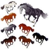 άλογα χρωμάτων συλλογής ελεύθερη απεικόνιση δικαιώματος