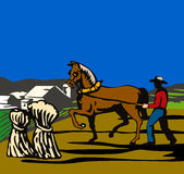 άλογο αγροτικών αγροτών Στοκ φωτογραφία με δικαίωμα ελεύθερης χρήσης