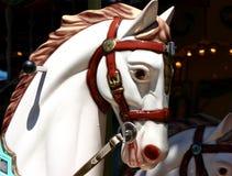άλογο ιπποδρομίων Στοκ Εικόνες