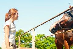 Άλογο κάστανων που φθάνει για το νέο ιδιοκτήτη έφηβη Στοκ Εικόνες