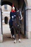 άλογο Λονδίνο φρουρών Στοκ Εικόνα