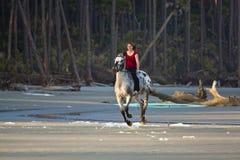 Άλογο οδήγησης γυναικών στην παραλία στοκ εικόνα με δικαίωμα ελεύθερης χρήσης