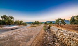Άλση ελιών Apulian Στοκ φωτογραφίες με δικαίωμα ελεύθερης χρήσης