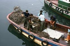 ΆΛΣΟΣ EL, PONTEVEDRA, ΓΑΛΙΚΊΑ, ΙΣΠΑΝΊΑ - ΙΟΥΛΊΟΥ 1983 Στοκ Φωτογραφίες