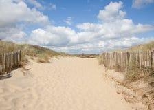 Άμμοι κυρτώματος, κύρτωμα: αμμόλοφοι και η παραλία Στοκ Εικόνα