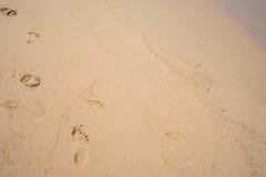 άμμος ίχνους παραλιών Στοκ Εικόνα