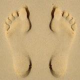 άμμος ίχνους Στοκ Εικόνα