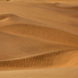άμμος αμμόλοφων ανασκόπησ&eta Στοκ Φωτογραφία