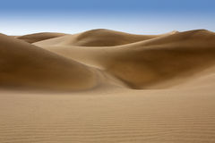 Άμμος αμμόλοφων ερήμων σε Maspalomas θλγραν θλθαναρηα Στοκ Εικόνες