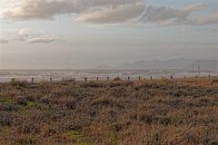 άμμος αμμόλοφων στην παραλία marmi dei forte Στοκ Εικόνες