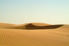 άμμος αμμόλοφων του Ντουμπάι Στοκ εικόνα με δικαίωμα ελεύθερης χρήσης