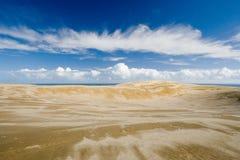 άμμος αμμόλοφων Στοκ εικόνα με δικαίωμα ελεύθερης χρήσης