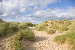 άμμος αμμόλοφων Στοκ Εικόνες