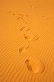 άμμος βημάτων αμμόλοφων Στοκ φωτογραφίες με δικαίωμα ελεύθερης χρήσης