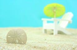 άμμος δολαρίων Στοκ Φωτογραφίες