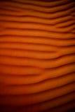 άμμος ερήμων Στοκ φωτογραφίες με δικαίωμα ελεύθερης χρήσης