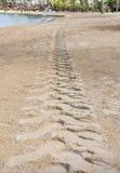 Άμμος ιχνών τρακτέρ Στοκ εικόνα με δικαίωμα ελεύθερης χρήσης