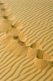 άμμος ιχνών Στοκ Εικόνα