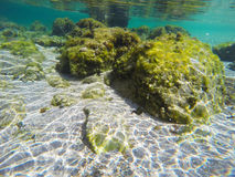 Άμμος και βράχοι που βλέπουν υποβρύχιοι Στοκ φωτογραφία με δικαίωμα ελεύθερης χρήσης