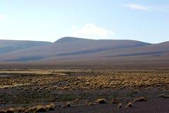 άμμος μερών θάμνων μικρή Στοκ φωτογραφία με δικαίωμα ελεύθερης χρήσης