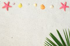 Άμμος παραλιών με τα starfishs, τα κοχύλια και τα φύλλα καρύδων στοκ εικόνα με δικαίωμα ελεύθερης χρήσης