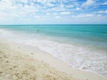 Άμμος, παραλία στην Κούβα Στοκ Εικόνες