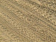 Άμμος που έχει οργανωθεί με τις μοτοσικλέτες, ίχνη ροδών μοτοσικλετών στην καφετιά άμμο στοκ φωτογραφία με δικαίωμα ελεύθερης χρήσης