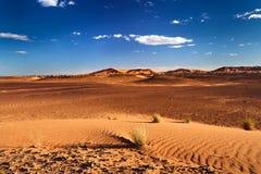 άμμος Σαχάρας αμμόλοφων ε&rh Στοκ Εικόνα
